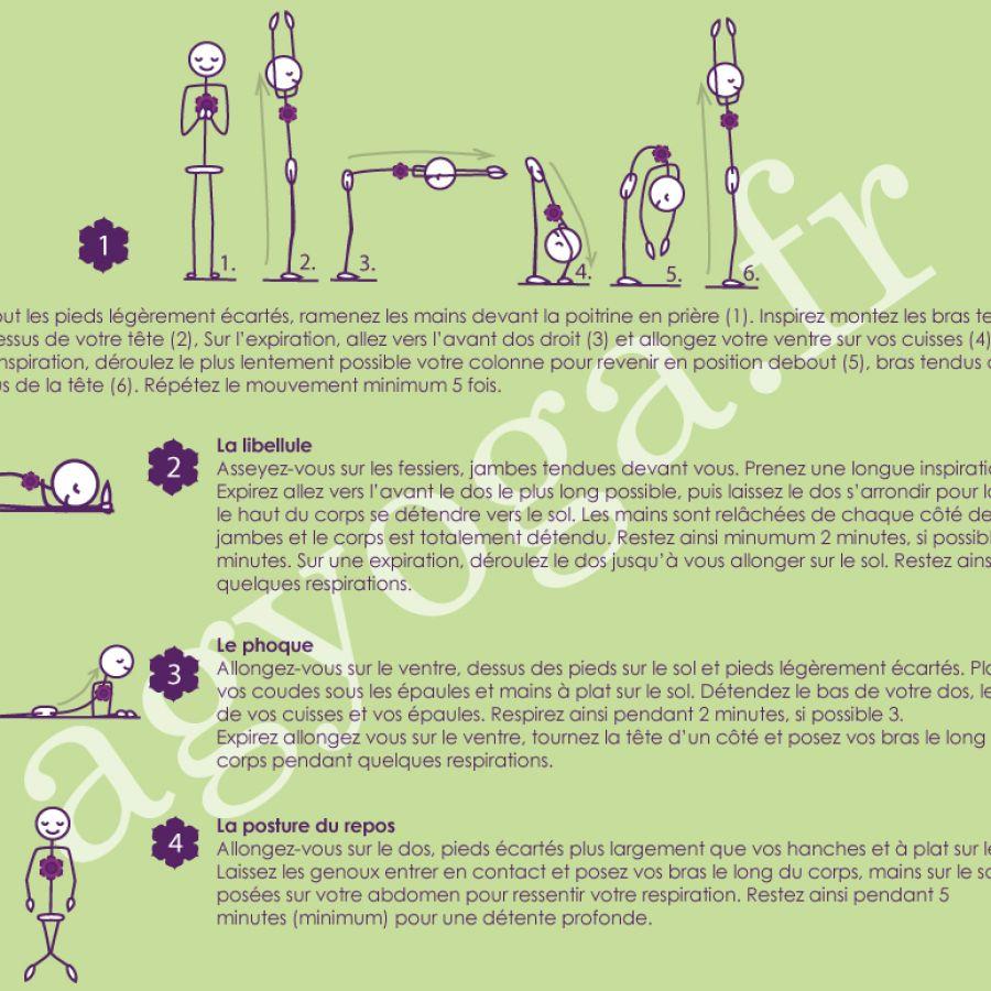 Fiche 6 – Yin yoga & détente