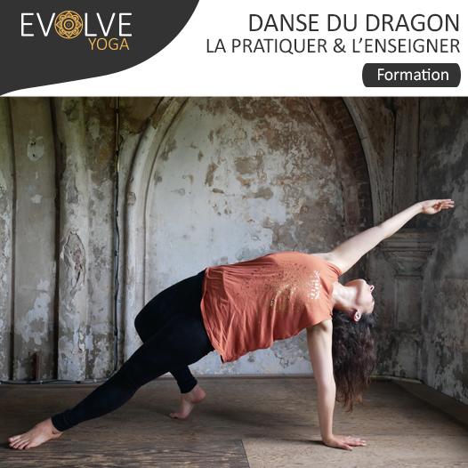 Danse du dragon : la pratiquer et la partager || 11 AU 13 JANVIER 2019 || PARIS, FRANCE