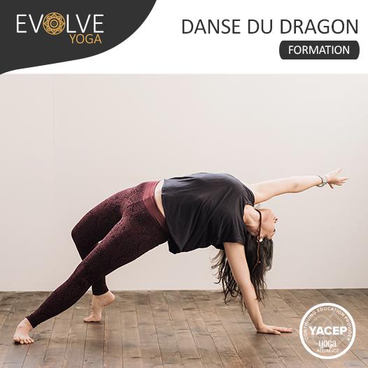 Module 3 «L'expansion» Formation 30h en Danse du dragon ▲ 13 AU 16 MAI 2021 ▽ BORDEAUX, FRANCE