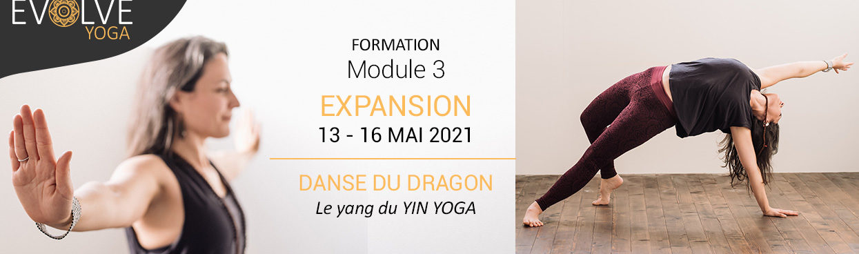 Formation_danseDuDragon_AnneGaelleYoga_Bordeaux